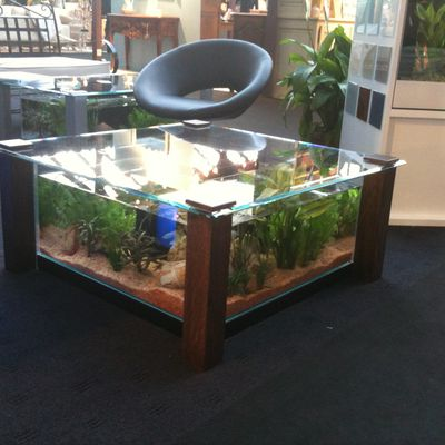 Aquarium ou table basse de salon ?