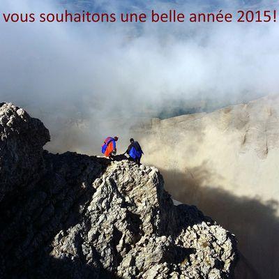 Bonne année 2015!!!