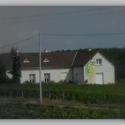Accueil camping car chez les Gaucher a Vouvray !!