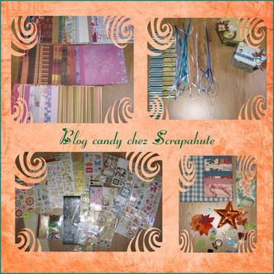 blog candy scrapahute