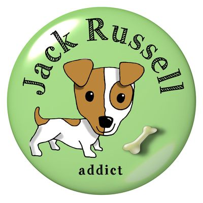 Quand 2 Jack Russell jouent !