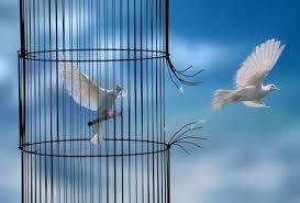 Soyons libres de tout joug religieux dominateur et marchons dans la liberté de l'Esprit