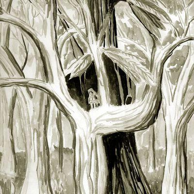 maison dans les arbres (2013)