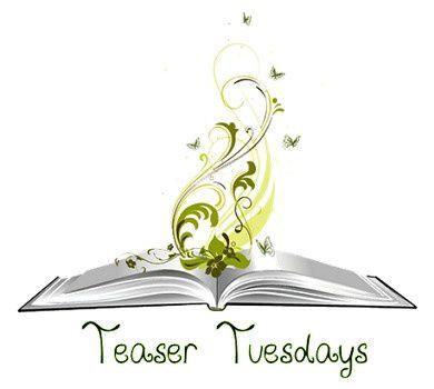 Teaser Tuesdays n°1