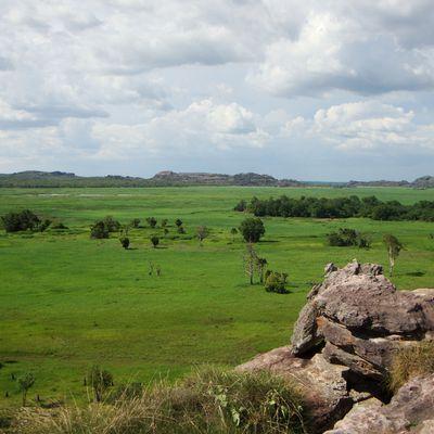 Le jour de l'An : Kakadu National Park