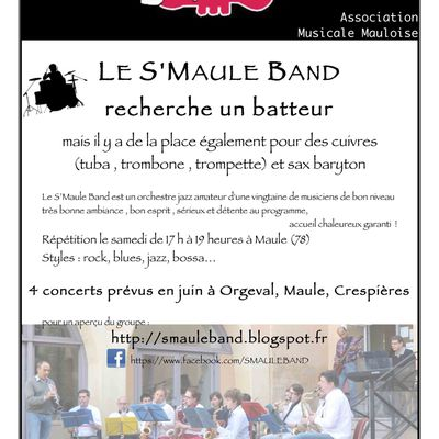 Le S'Maule Band recrute...