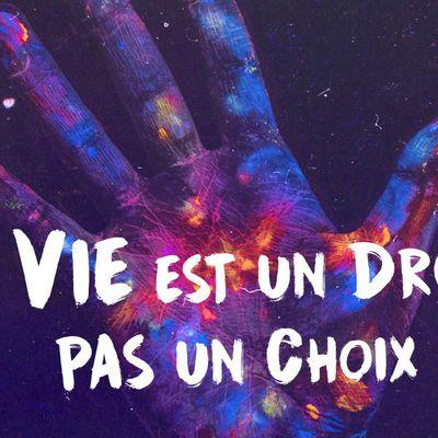 www.enmarchepourlavie.fr