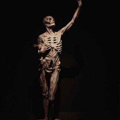 Quelles sont les périodes de la vie où survient la peur de la mort?