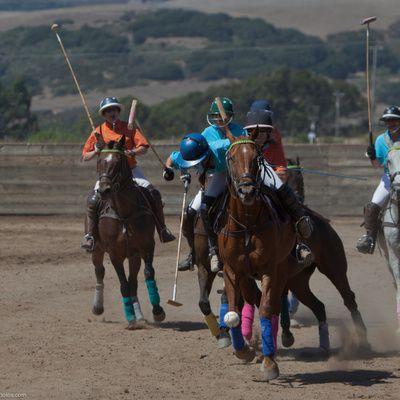 Les jeux à cheval : que peut-on organiser ?