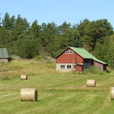 La ferme agricole : des vacances écologiques ?