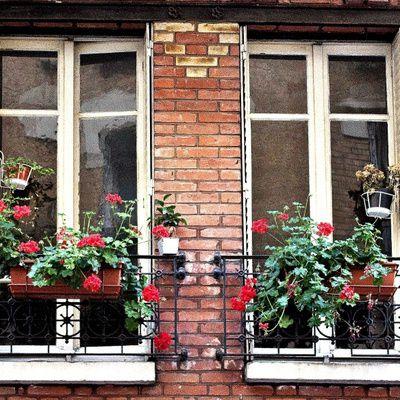 Comment bien poser les appuis de fenêtre? (Conseils, guide, astuces)