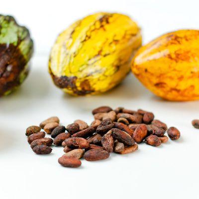 Comment choisir une crème de cacao ? (conseils)