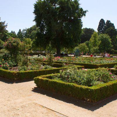 Comment s 39 occuper d 39 un brom lia techniques conseils - Comment agencer son jardin ...