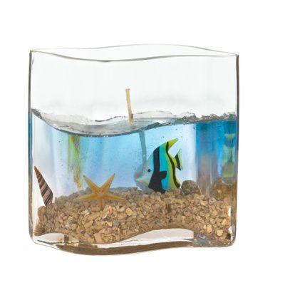 Les différents modèles d'aquarium cube et leurs avantages