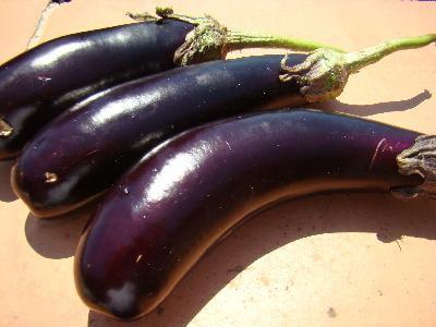 Conserve d'aubergines  (recette sicilienne)