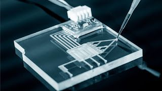 Lab On Chip (LOC) Market: The Gap between Promise and Practice - Understanding Industry Emerging Technology