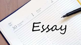 How to fix errors in essay assignments