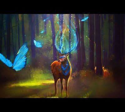 Enchanted Forest Music