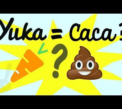 Yuka est-il fiable