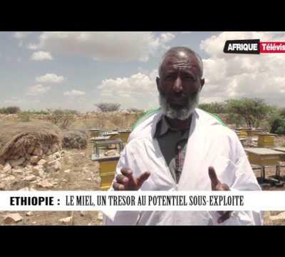 Afrique Télévision : Le Journal de 13h (24 -05 -2017)