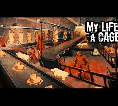 My Life's a Cage