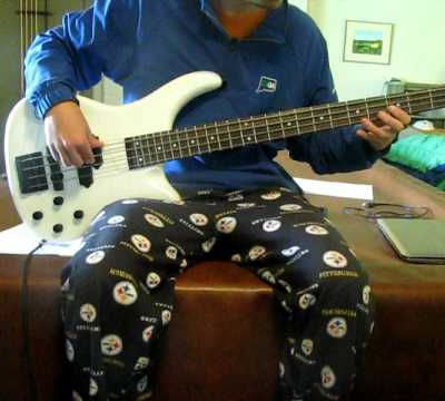 Neil Young - Old Man (Bass Cover)