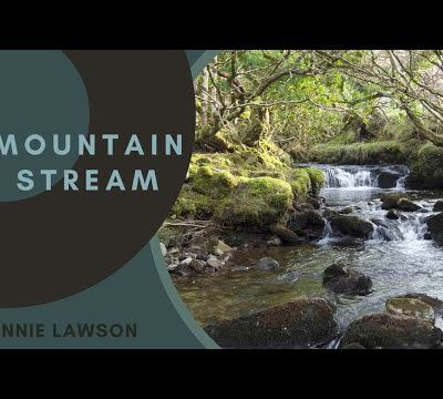 Relax 8 Hours of Birds Singing and Water Sounds-Nature