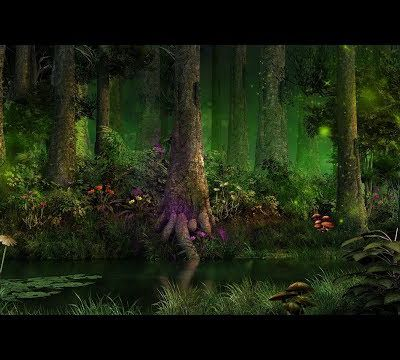 MYSTICAL Forest Music