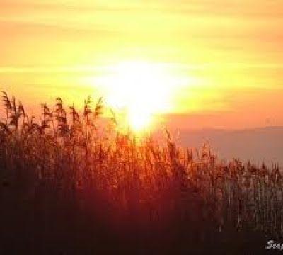Relaxation : Lumière dorée
