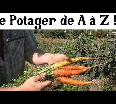 Potager de A à Z -15- (soigner les plantes)