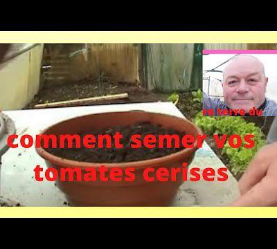 en fevrier au jardin on sème les premieres tomates cerises en video