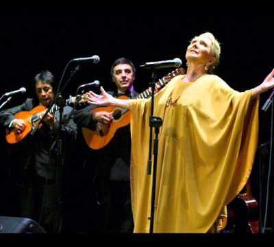 Maria Dolores Pradera - Palmero sube a la palma