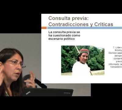 Territorios y Conflictos en el contexto del Neoextractivismo en América Latina (Video)