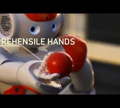 Nao the Robot