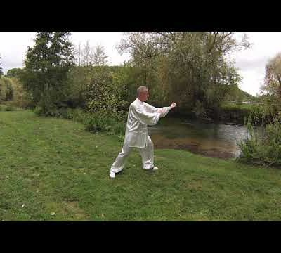 VIDEO TAIJIQUAN FORME 32 POSTURES STYLES MIXTES