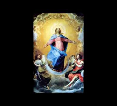 Father Hewko's sermon : August 15th 2017 : Feast of the Assumption
