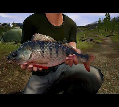 Dovetail Games Euro Fishing présente son nouveau DLC Bergsee