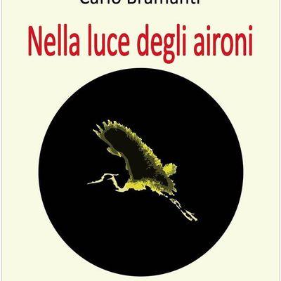 «Nella luce degli aironi», romanzo breve di Carlo Bramanti, anche in e-book - Segnalazione Libro