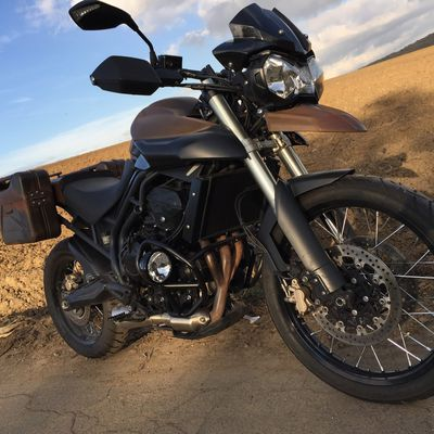 "Triumph Tiger "" Mad Tiger"""