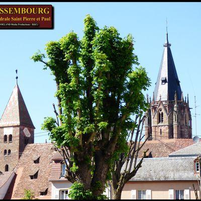 WISSEMBOURG - Ancienne principauté indépendante - belle ville d'Alsace