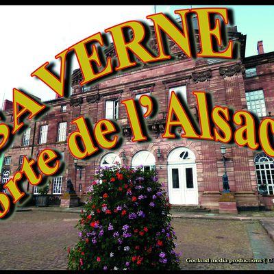 Notre-Dame-de-la-Nativité, EGLISE collégiale de SAVERNE ( Alsace )