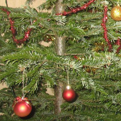 La prime de Noël 2017 : pour qui et pour quand ?