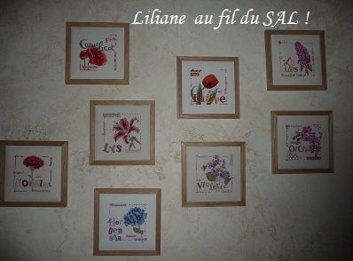 Les Lili points de Liliane !