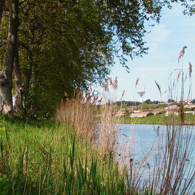 Promenade au bord du canal (suite)