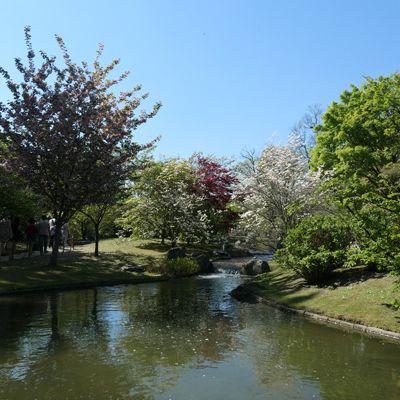 Le jardin japonais d'Hasselt