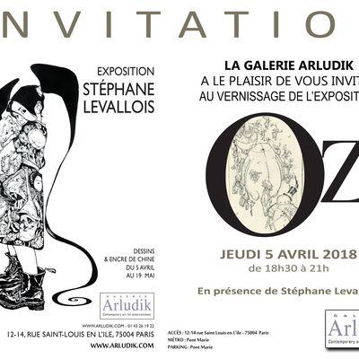 EXPOSITION STEPHANE LEVALLOIS