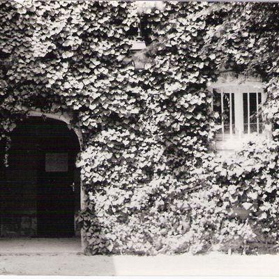 4 - 48 heures à Saintes. La Charente, un site en centre ville, la Foire. Amélie.. ATTAQUE culturelle Saintes.