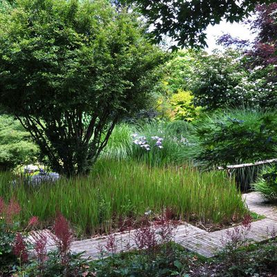 Le jardin de Valérianes, la simplicité radieuse
