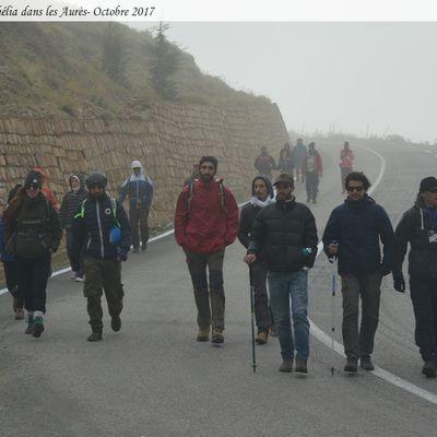 Vagues... Randonneurs de Skikda : Bivouac à Chélia avec 2338 m d'altitude (115)