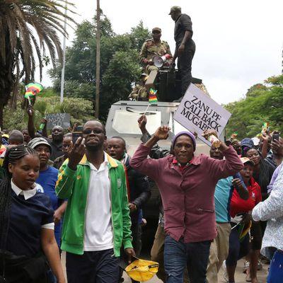 Zimbabvo: giganta manifestacio por peti «novan komenciĝon»